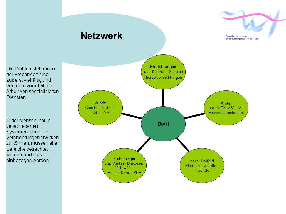 Netzwerk Die Problemstellungen der Probanden sind äußerst vielfältig und erfordern zum Teil die Arbeit von spezialisierten Diensten.