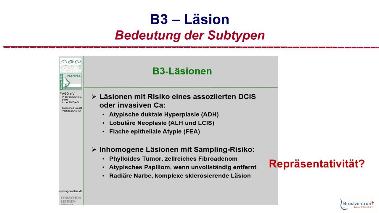 B3 – Läsion Bedeutung der Subtypen Repräsentativität