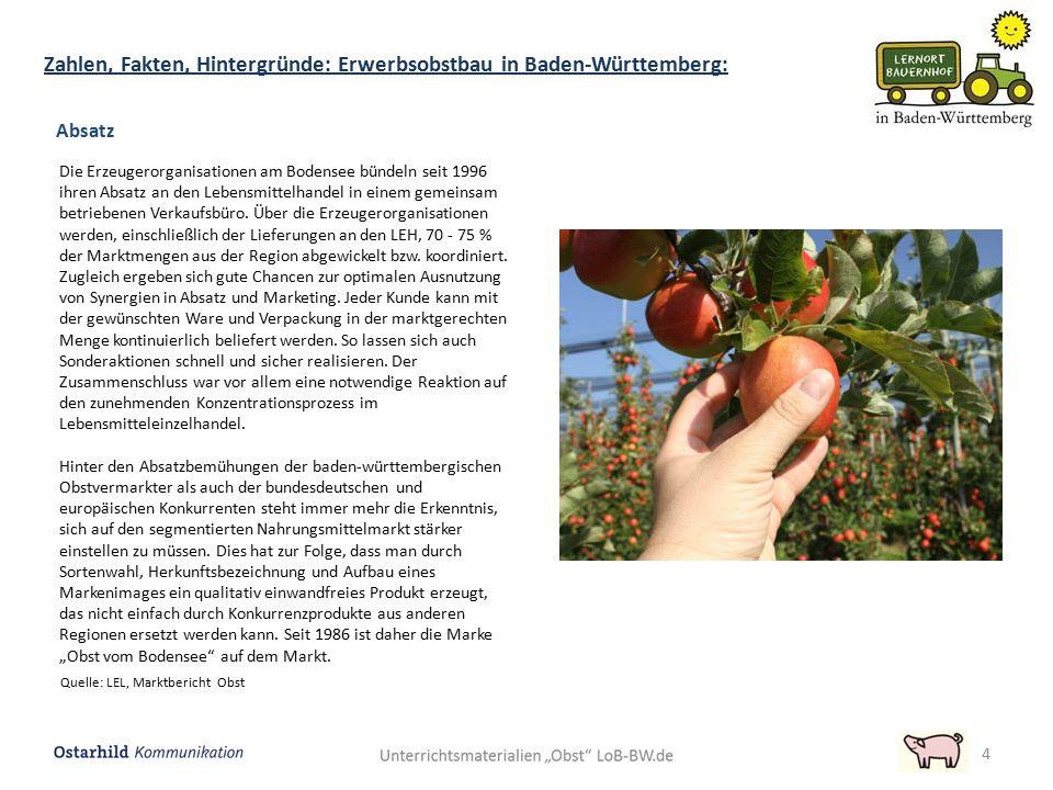 4 Quelle: LEL, Marktbericht Obst Absatz Die Erzeugerorganisationen am Bodensee bündeln seit 1996 ihren Absatz an den Lebensmittelhandel in einem gemei