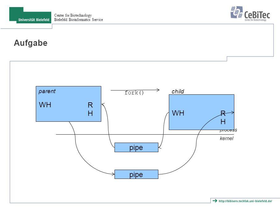 Center for Biotechnology Bielefeld Bioinformatics Service Aufgabe pipe WH RHRH process kernel WH RHRH parent child fork() pipe