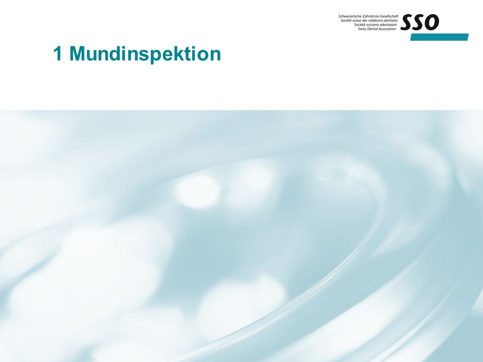 1 Mundinspektion