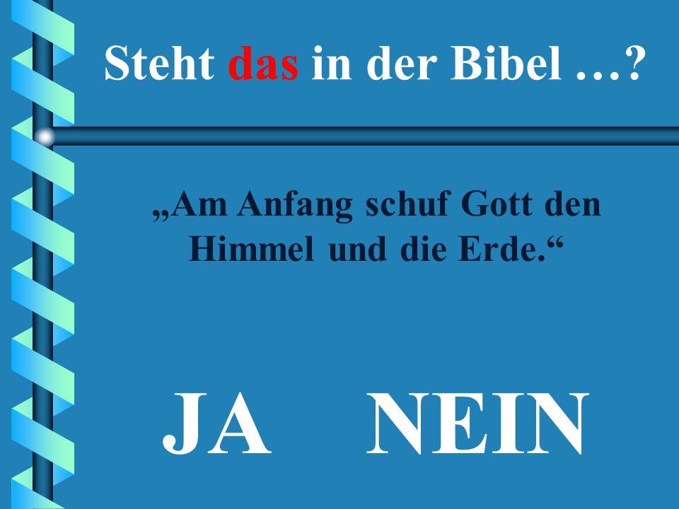 Ein Quiz zum Einstieg in das Buch der Bücher Steht das in der Bibel …?