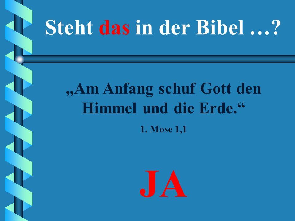 """""""Am Anfang schuf Gott den Himmel und die Erde."""" Steht das in der Bibel …? JANEIN"""