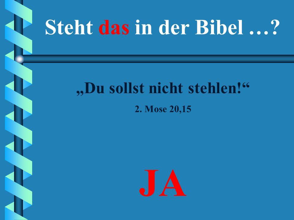 """""""Du sollst nicht stehlen!"""" JANEIN Steht das in der Bibel …?"""