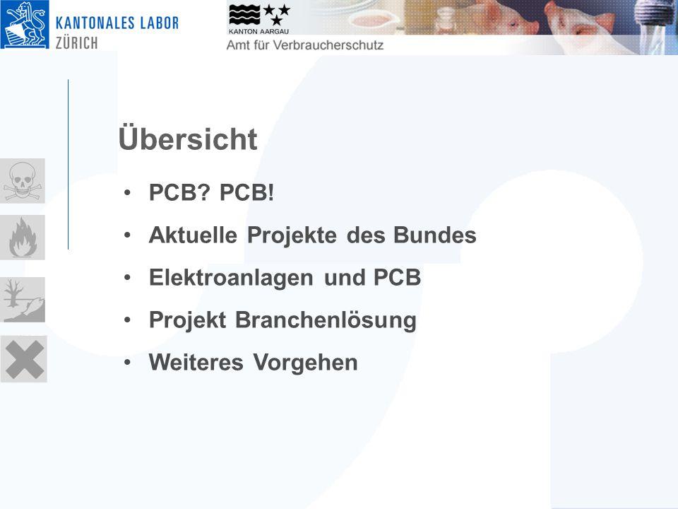 Übersicht PCB? PCB! Aktuelle Projekte des Bundes Elektroanlagen und PCB Projekt Branchenlösung Weiteres Vorgehen