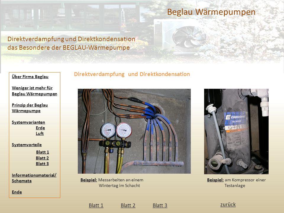 Beglau Wärmepumpen Direktverdampfung und Direktkondensation das Besondere der BEGLAU-Wärmepumpe Direktverdampfung und Direktkondensation Beispiel: Mes