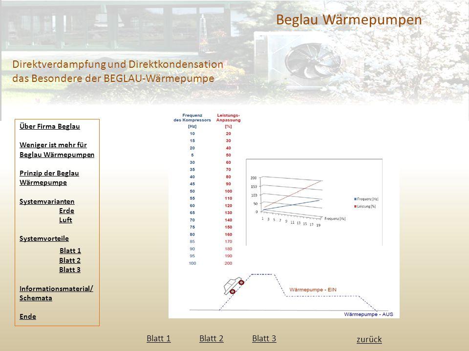 Beglau Wärmepumpen Direktverdampfung und Direktkondensation das Besondere der BEGLAU-Wärmepumpe zurück Blatt 1 Blatt 2 Blatt 3 Blatt 1Blatt 2Blatt 3 Ü
