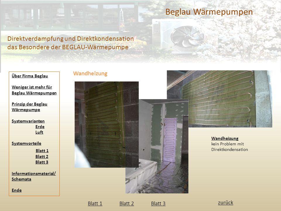 Beglau Wärmepumpen Direktverdampfung und Direktkondensation das Besondere der BEGLAU-Wärmepumpe Wandheizung Wandheizung kein Problem mit Direktkondens