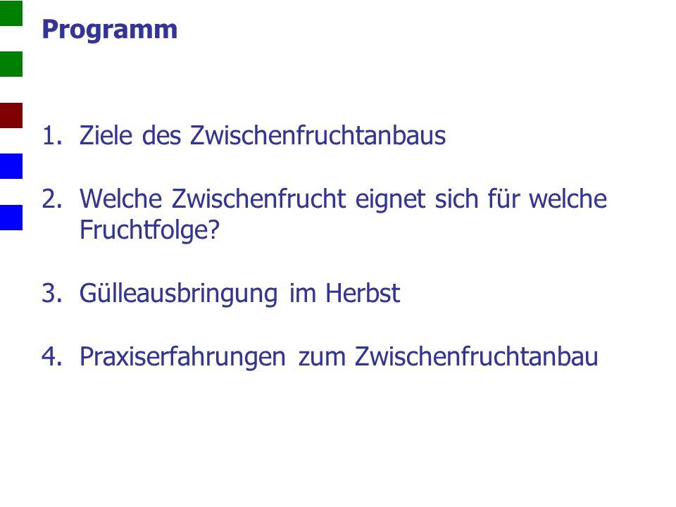 Ölrettich -Ölrettich +Pha.-Pha.