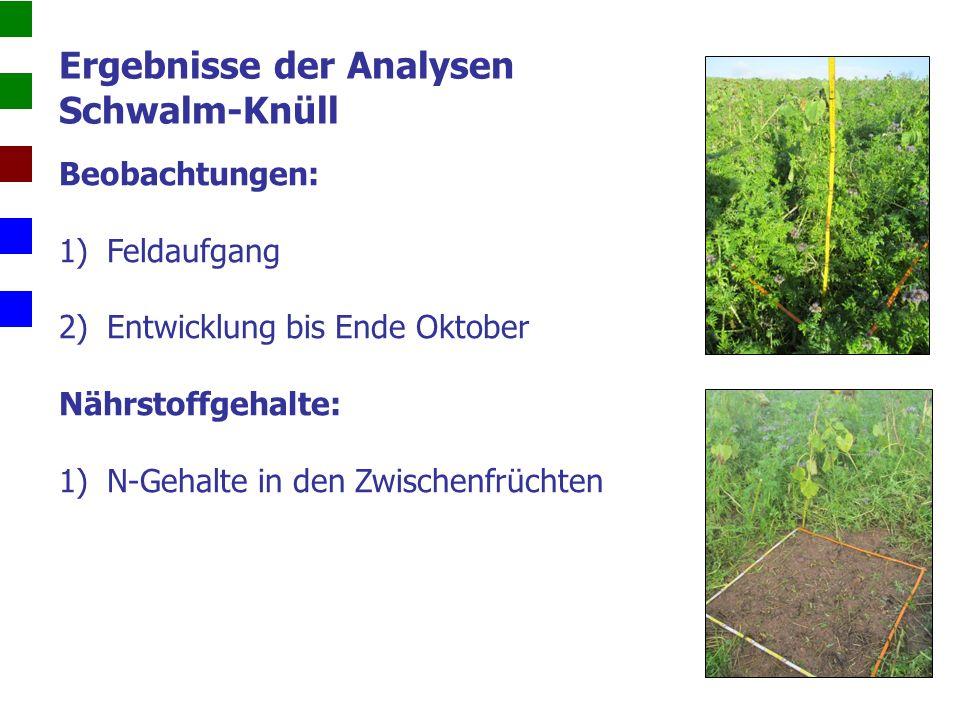Beobachtungen: 1)Feldaufgang 2)Entwicklung bis Ende Oktober Nährstoffgehalte: 1)N-Gehalte in den Zwischenfrüchten Ergebnisse der Analysen Schwalm-Knüll