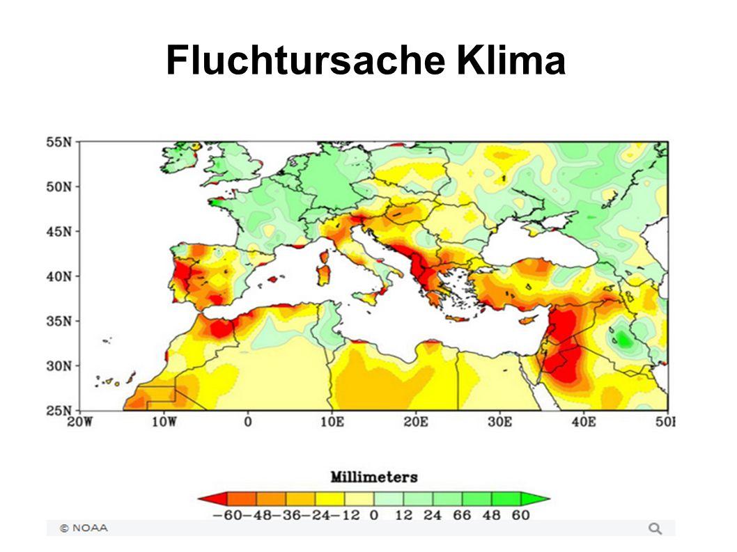 Fluchtursache Klima