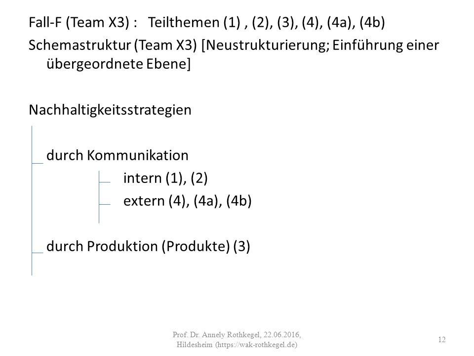 Fall-F (Team X3) : Teilthemen (1), (2), (3), (4), (4a), (4b) Schemastruktur (Team X3) [Neustrukturierung; Einführung einer übergeordnete Ebene] Nachhaltigkeitsstrategien durch Kommunikation intern (1), (2) extern (4), (4a), (4b) durch Produktion (Produkte) (3) 12 Prof.