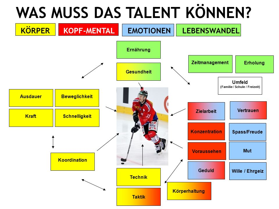 Swiss Ice Hockey Federation DIE LEBENSWELT DES TALENTS IM SPANNUNGSFELD 18  Sport, Ausbildung und Familie  Umfeldmanagement wird zum Talentkriterium.