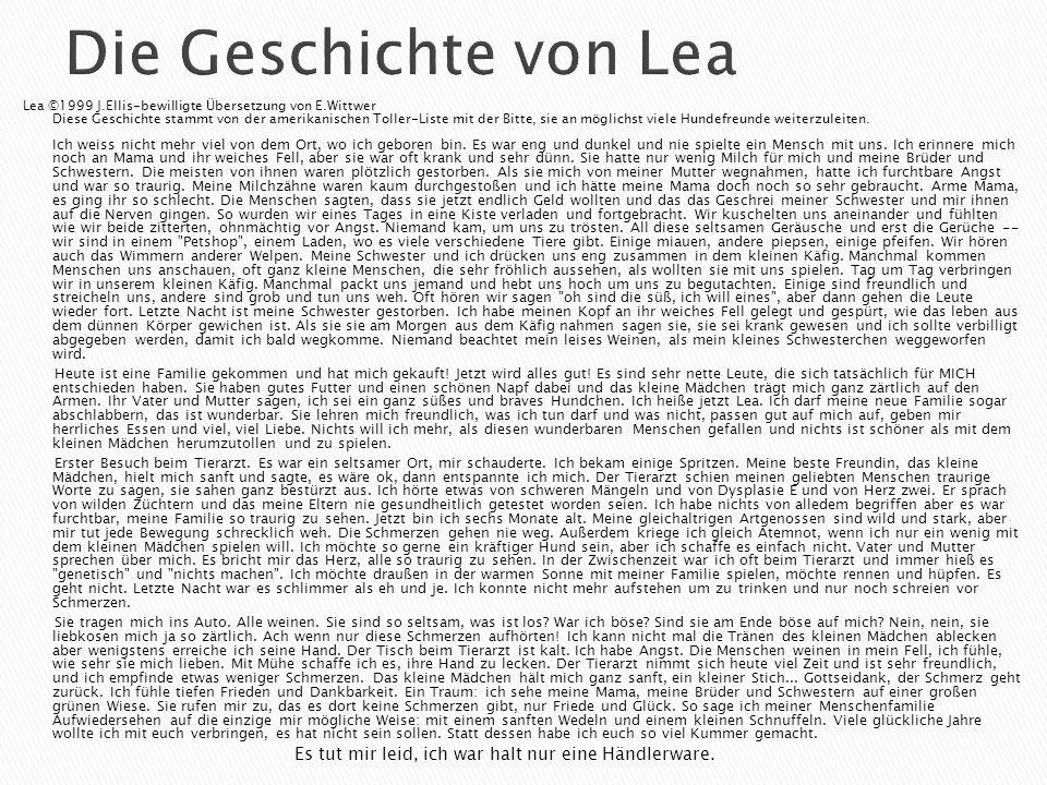 Die Geschichte von Lea Lea ©1999 J.Ellis-bewilligte Übersetzung von E.Wittwer Diese Geschichte stammt von der amerikanischen Toller-Liste mit der Bitte, sie an möglichst viele Hundefreunde weiterzuleiten.