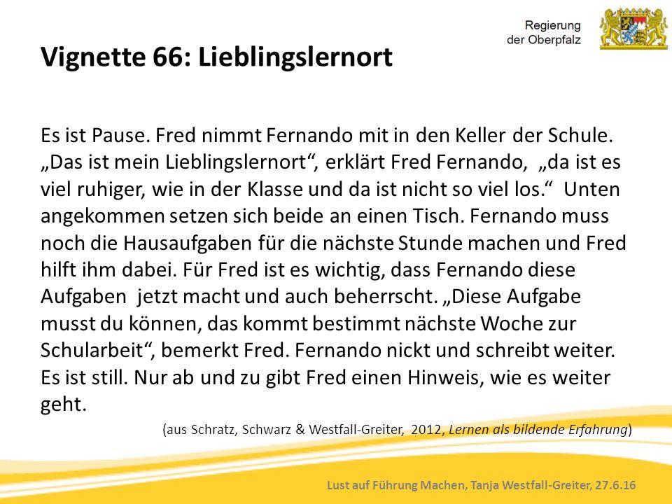 Lust auf Führung Machen, Tanja Westfall-Greiter, 27.6.16 Vignette 66: Lieblingslernort Es ist Pause. Fred nimmt Fernando mit in den Keller der Schule.