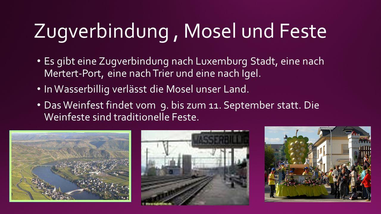 Zugverbindung, Mosel und Feste Es gibt eine Zugverbindung nach Luxemburg Stadt, eine nach Mertert-Port, eine nach Trier und eine nach Igel. Es gibt ei