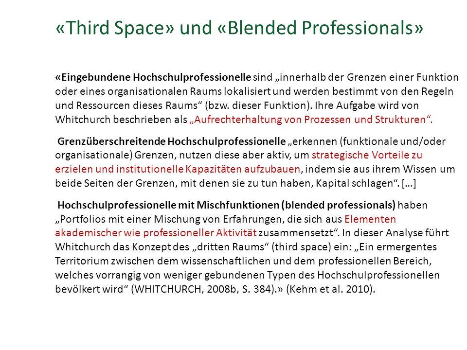 """«Third Space» und «Blended Professionals» «Eingebundene Hochschulprofessionelle sind """"innerhalb der Grenzen einer Funktion oder eines organisationalen Raums lokalisiert und werden bestimmt von den Regeln und Ressourcen dieses Raums (bzw."""