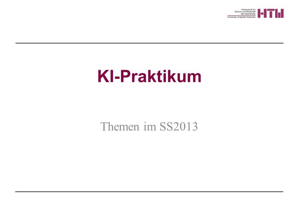 KI-Praktikum Themen im SS2013