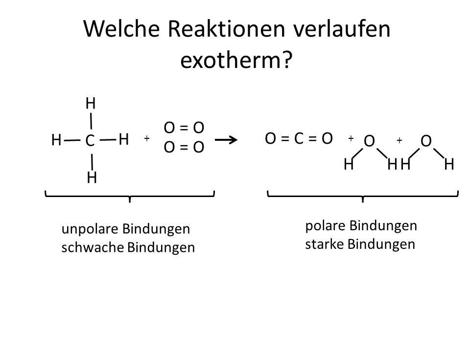 Welche Reaktionen verlaufen exotherm.