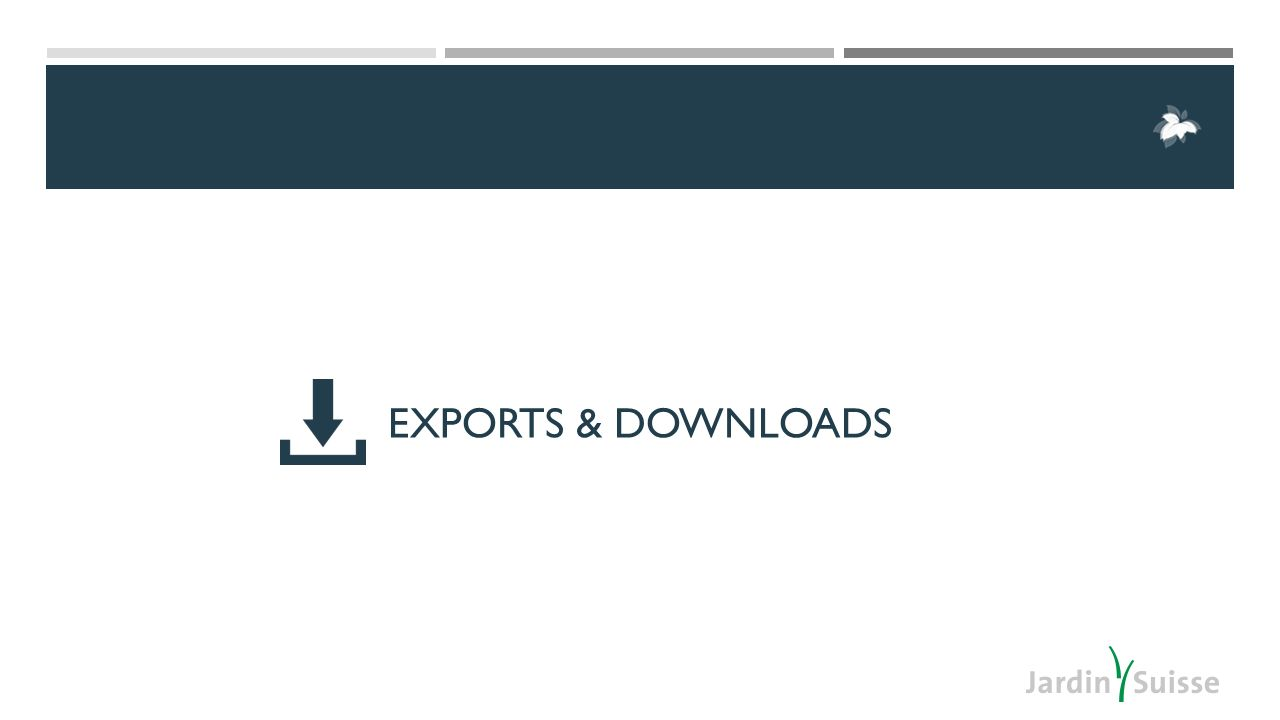 EXPORTS & DOWNLOADS