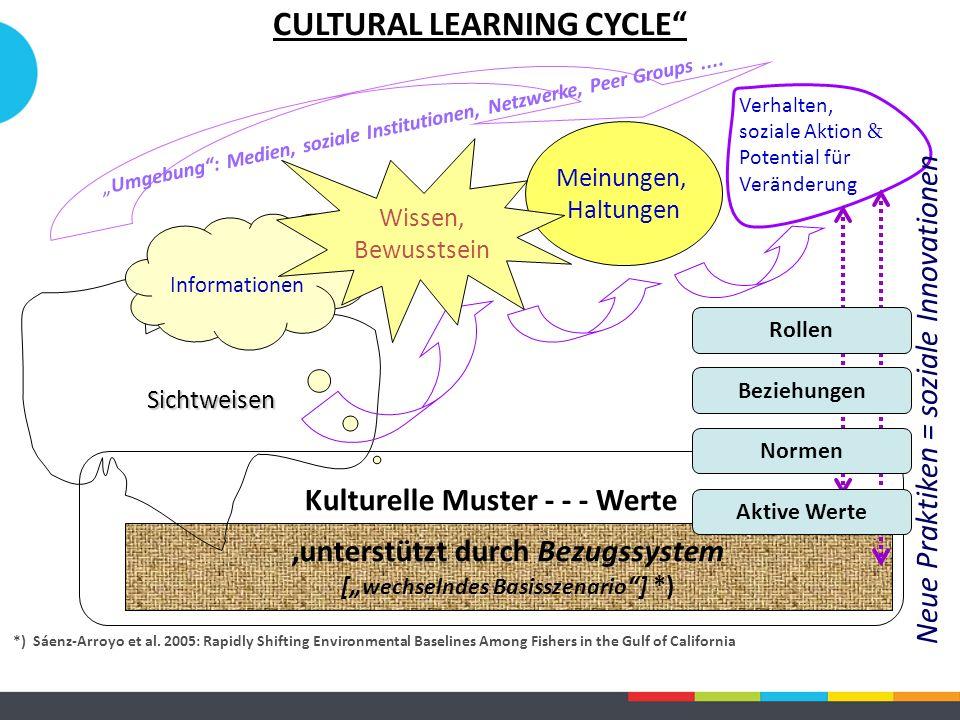 """Kulturelle Muster - - - Werte 'unterstützt durch Bezugssystem ["""" wechselndes Basisszenario ] *) Sichtweisen Informationen Meinungen, Haltungen Verhalten, soziale Aktion & Potential für Veränderung *) Sáenz-Arroyo et al."""