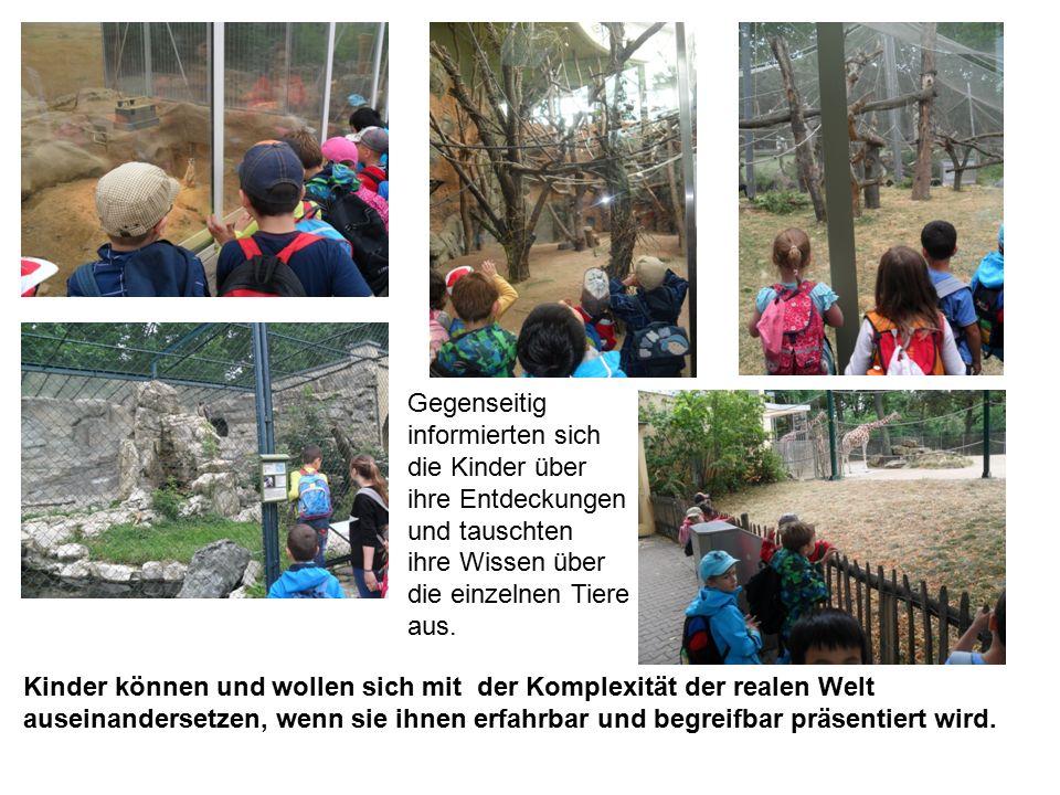 Gegenseitig informierten sich die Kinder über ihre Entdeckungen und tauschten ihre Wissen über die einzelnen Tiere aus.