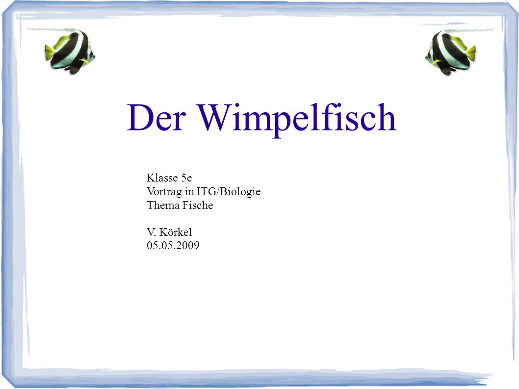 Der Wimpelfisch Klasse 5e Vortrag in ITG/Biologie Thema Fische V. Körkel 05.05.2009