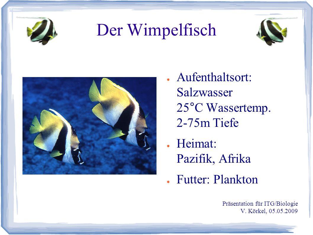 Der Wimpelfisch Quellen: ● Prof.Dr. Theo Jähn (Hrsg.): Der farbige Brehm, Herder-Verlag, 19.