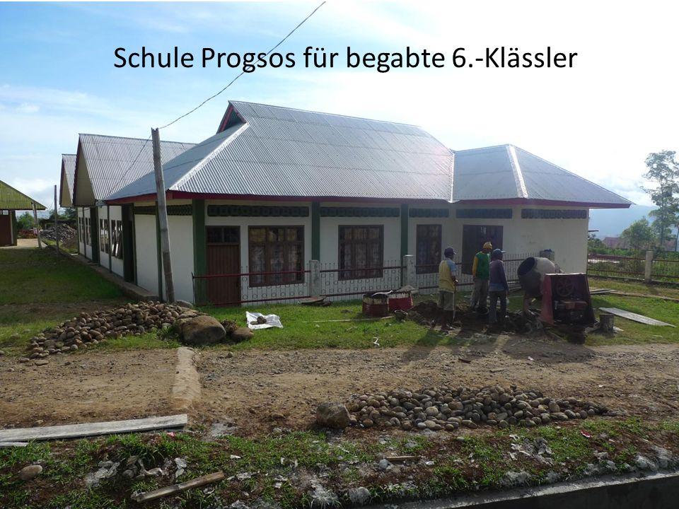 Schule Progsos für begabte 6.-Klässler
