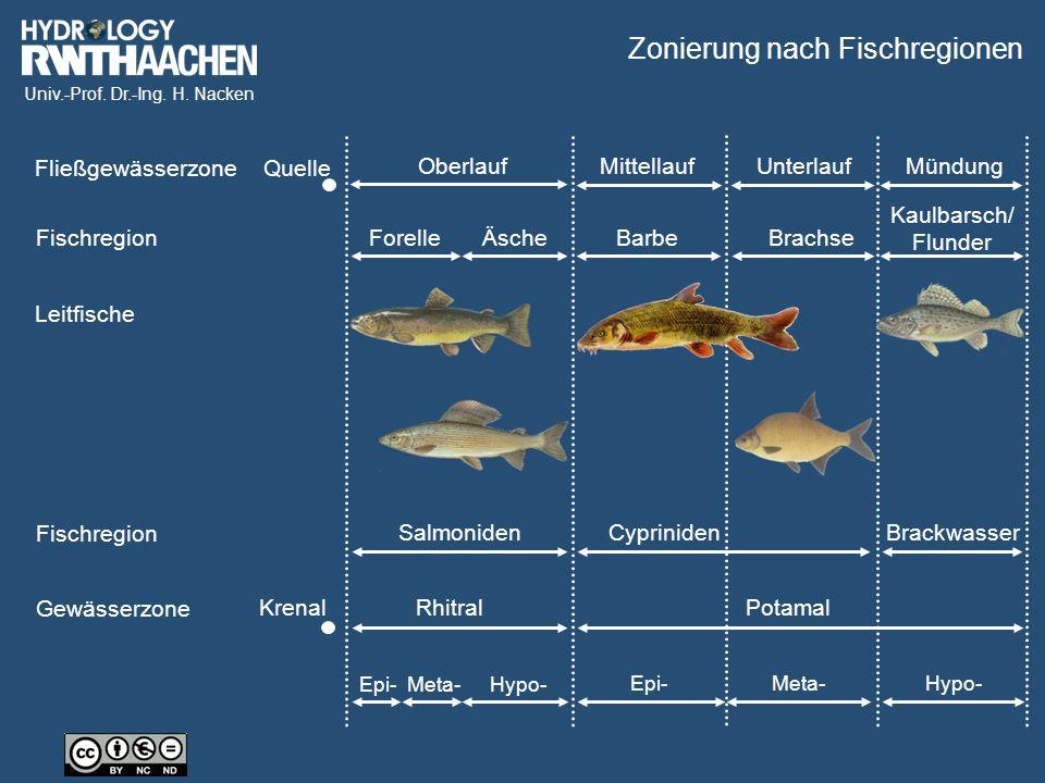 Univ.-Prof. Dr.-Ing. H. Nacken Fließgewässerzone Fischregion Leitfische Fischregion Gewässerzone Quelle OberlaufMittellaufUnterlaufMündung ForelleÄsch