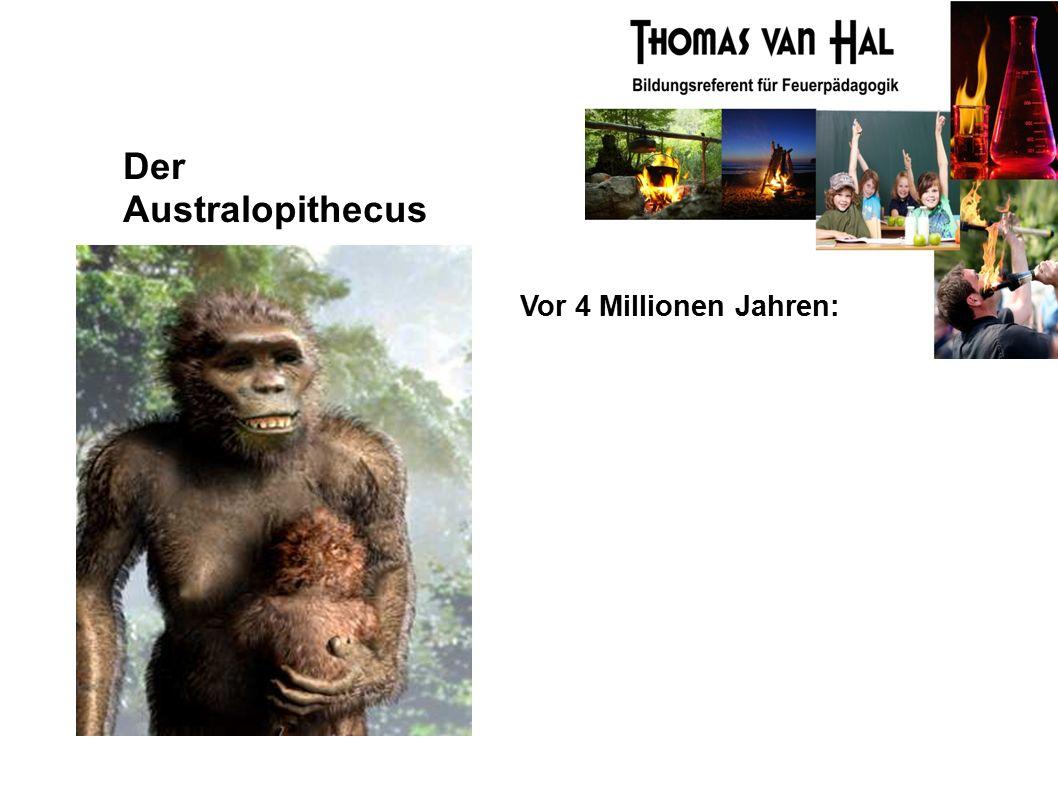 Der Australopithecus Vor 4 Millionen Jahren: