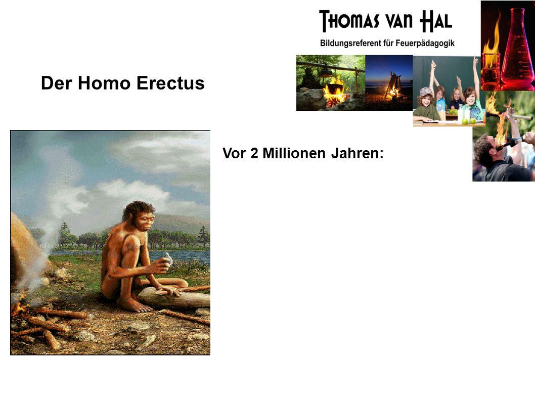 Der Homo Erectus Vor 2 Millionen Jahren: