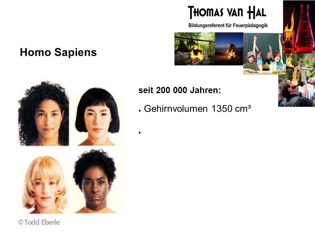 Homo Sapiens seit 200 000 Jahren: ● Gehirnvolumen 1350 cm³ ●