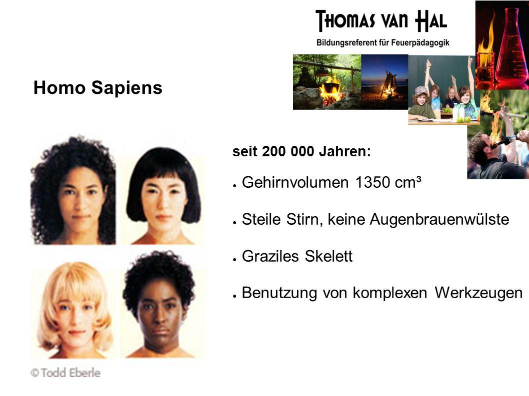 Homo Sapiens seit 200 000 Jahren: ● Gehirnvolumen 1350 cm³ ● Steile Stirn, keine Augenbrauenwülste ● Graziles Skelett ● Benutzung von komplexen Werkzeugen
