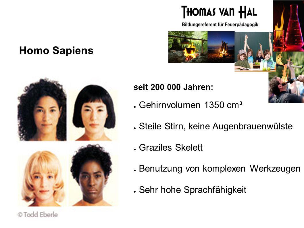 Homo Sapiens seit 200 000 Jahren: ● Gehirnvolumen 1350 cm³ ● Steile Stirn, keine Augenbrauenwülste ● Graziles Skelett ● Benutzung von komplexen Werkzeugen ● Sehr hohe Sprachfähigkeit