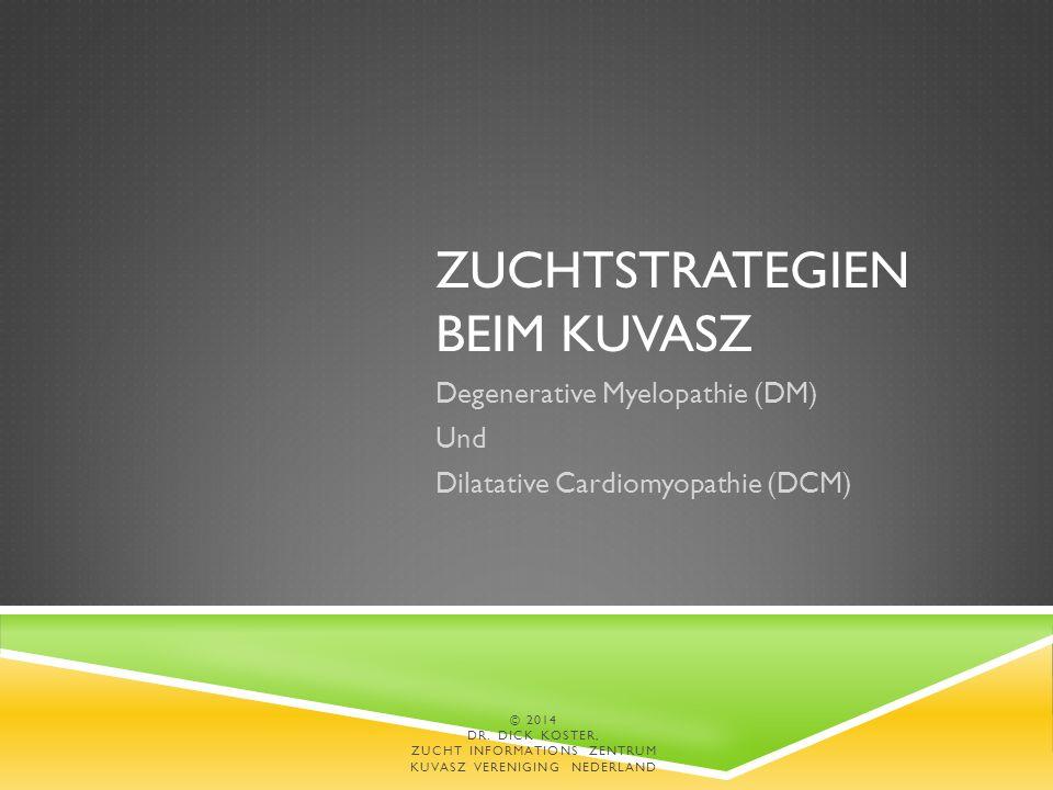 ZUCHTSTRATEGIEN BEIM KUVASZ Degenerative Myelopathie (DM) Und Dilatative Cardiomyopathie (DCM) © 2014 DR.