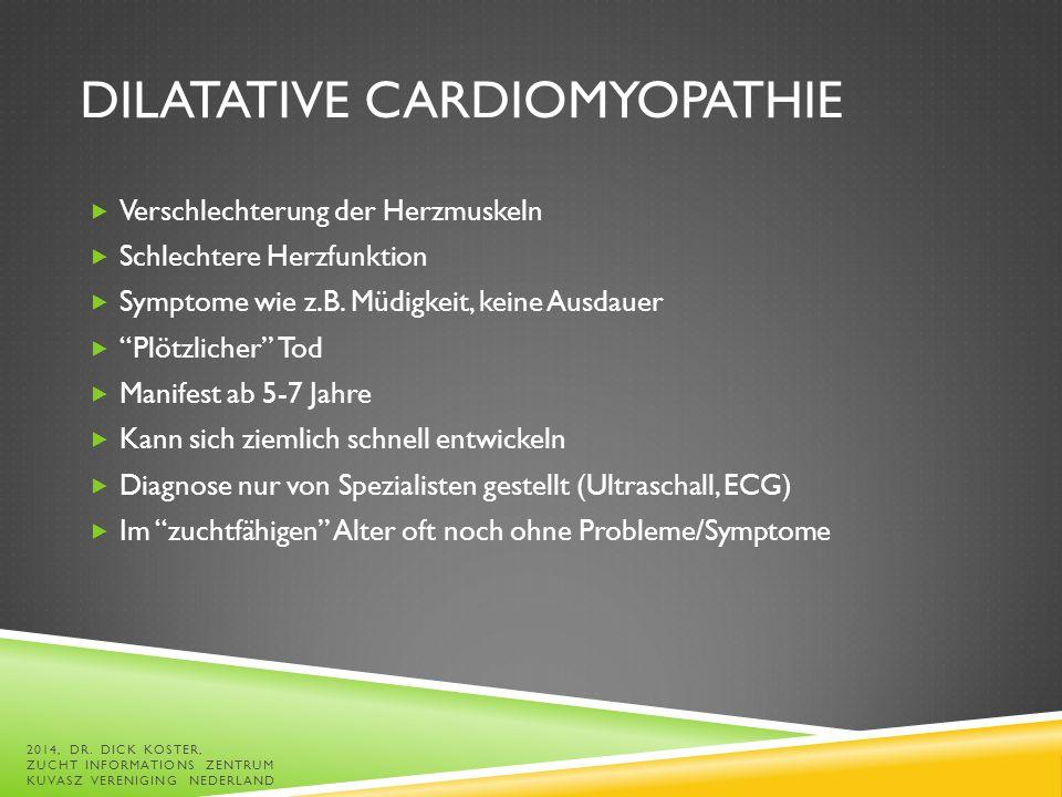 DILATATIVE CARDIOMYOPATHIE  Verschlechterung der Herzmuskeln  Schlechtere Herzfunktion  Symptome wie z.B.