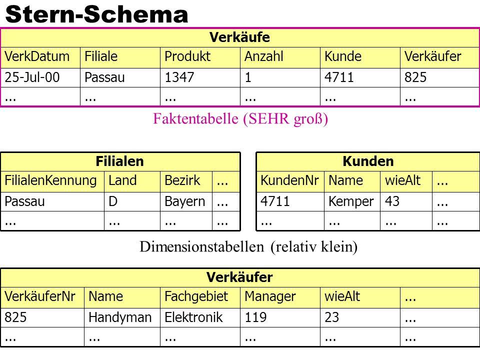Stern-Schema... 825471111347Passau25-Jul-00 VerkäuferKundeAnzahlProduktFilialeVerkDatum Verkäufe...
