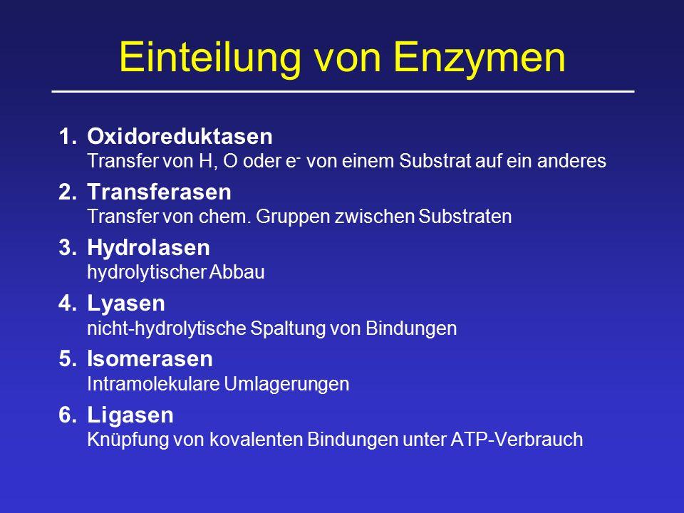 Einteilung von Enzymen 1.Oxidoreduktasen Transfer von H, O oder e - von einem Substrat auf ein anderes 2.Transferasen Transfer von chem. Gruppen zwisc