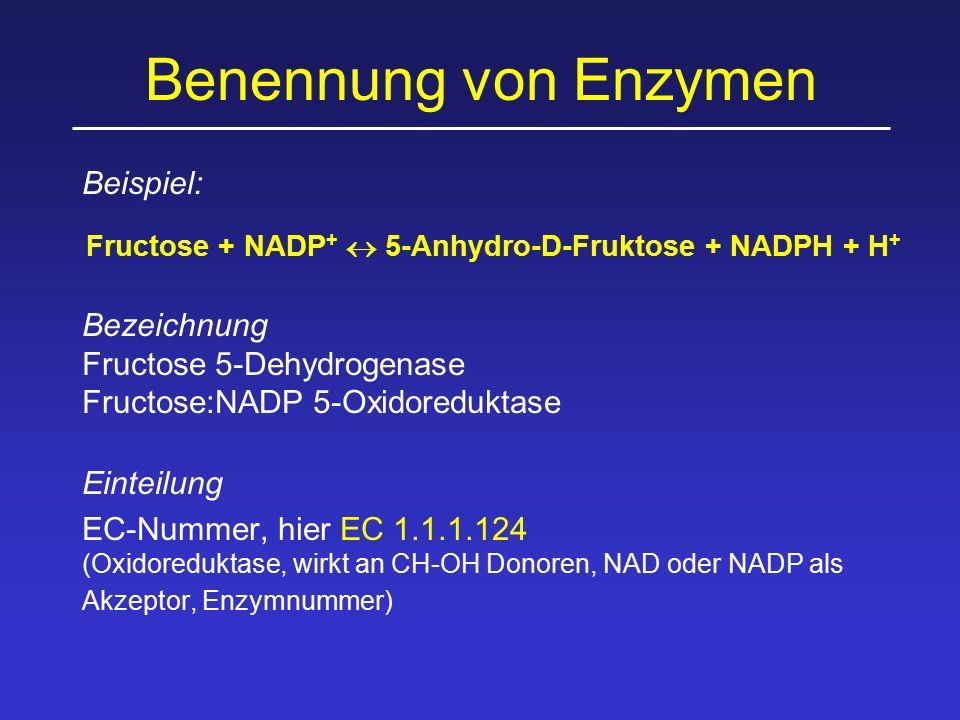 Benennung von Enzymen Beispiel: Fructose + NADP +  5-Anhydro-D-Fruktose + NADPH + H + Bezeichnung Fructose 5-Dehydrogenase Fructose:NADP 5-Oxidoreduk