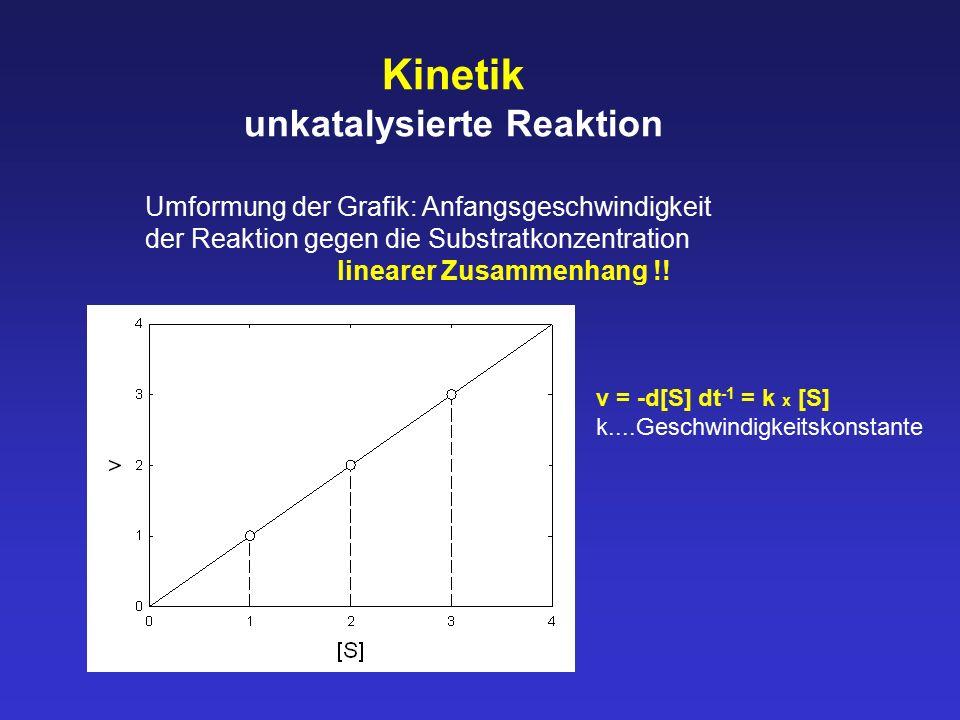 Kinetik unkatalysierte Reaktion Umformung der Grafik: Anfangsgeschwindigkeit der Reaktion gegen die Substratkonzentration linearer Zusammenhang !! v =