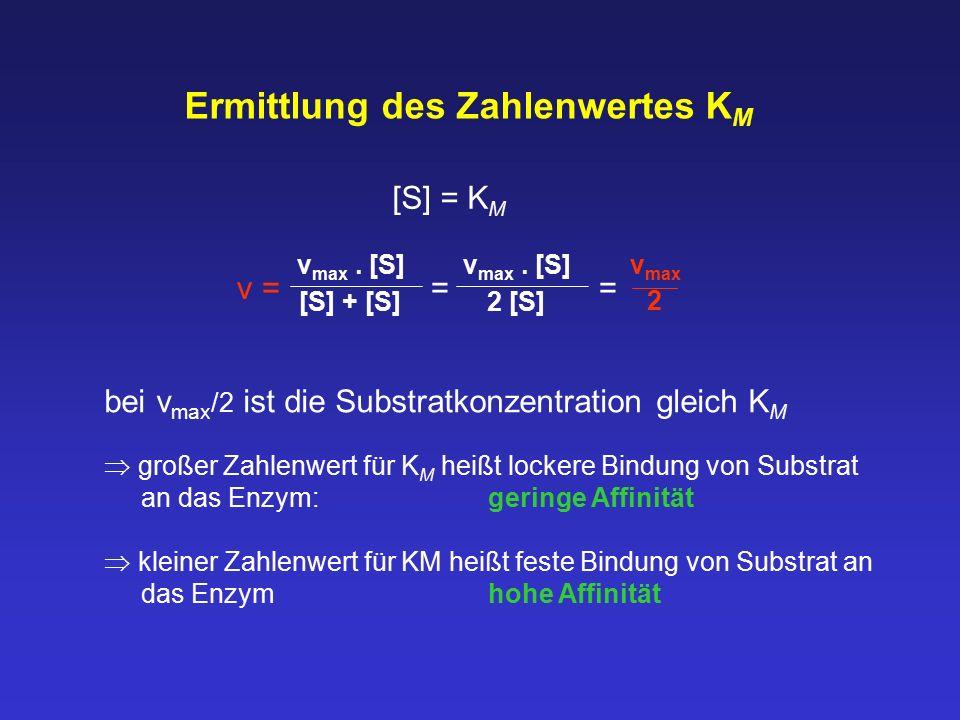 Ermittlung des Zahlenwertes K M v = = = v max. [S] [S] + [S] v max. [S] 2 [S] v max 2 bei v max /2 ist die Substratkonzentration gleich K M  großer Z