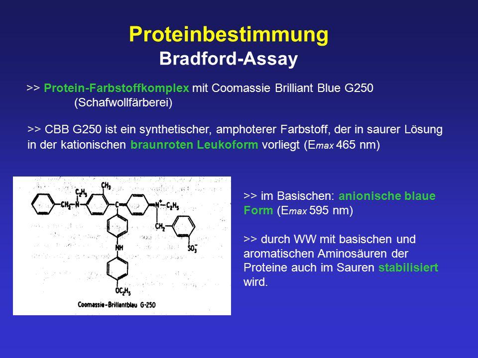 Proteinbestimmung Bradford-Assay >> Protein-Farbstoffkomplex mit Coomassie Brilliant Blue G250 (Schafwollfärberei) >> im Basischen: anionische blaue F
