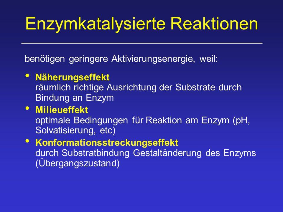 Enzymkatalysierte Reaktionen benötigen geringere Aktivierungsenergie, weil: Näherungseffekt räumlich richtige Ausrichtung der Substrate durch Bindung