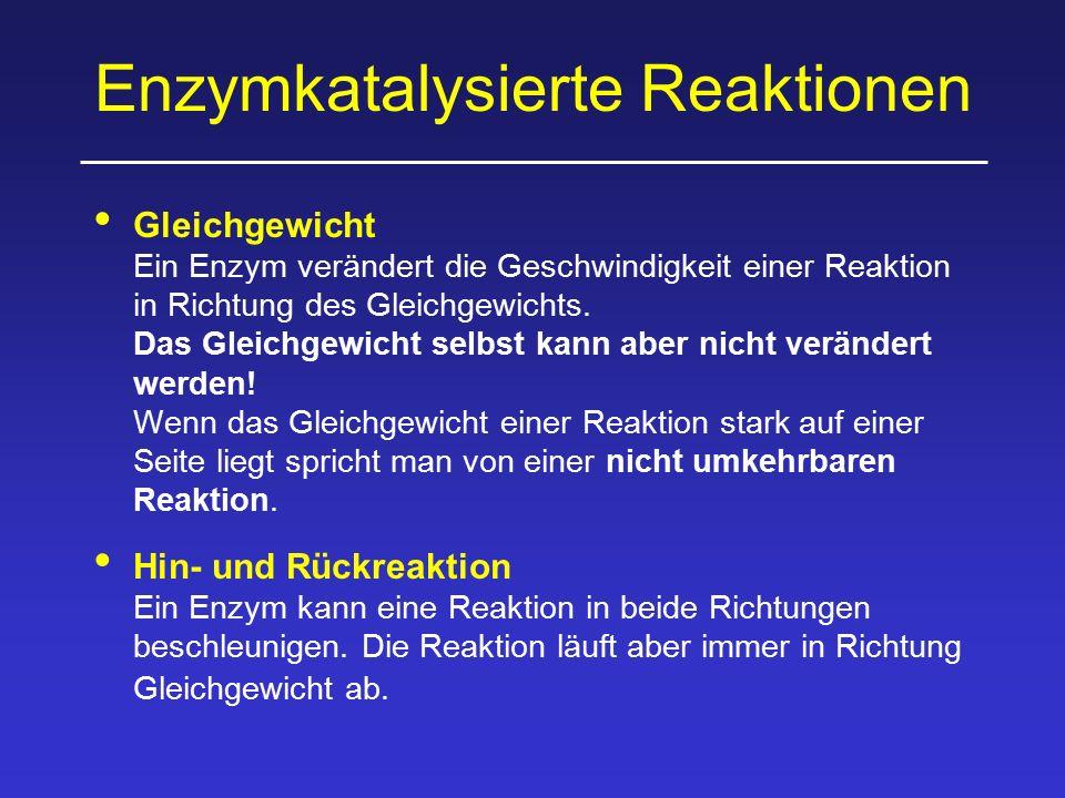 Enzymkatalysierte Reaktionen Gleichgewicht Ein Enzym verändert die Geschwindigkeit einer Reaktion in Richtung des Gleichgewichts. Das Gleichgewicht se