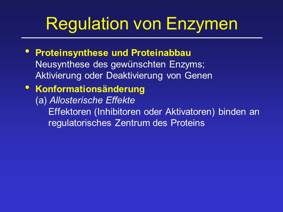 Allosterische Effekte InhibitorAktivator Enzym inaktiv Enzym aktiv