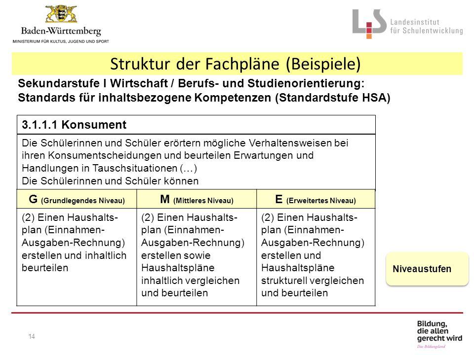 Struktur der Fachpläne (Beispiele) Sekundarstufe I Wirtschaft / Berufs- und Studienorientierung: Standards für inhaltsbezogene Kompetenzen (Standardst