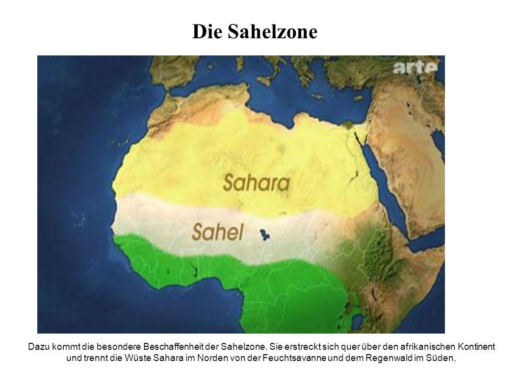 Dazu kommt die besondere Beschaffenheit der Sahelzone.