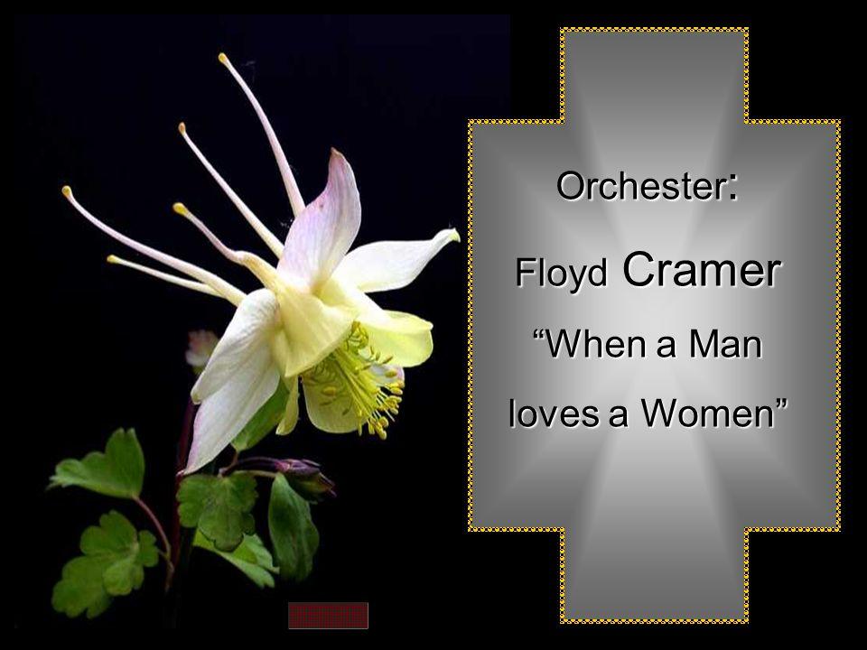 Orchester : Floyd Floyd Cramer When a Man loves a Women