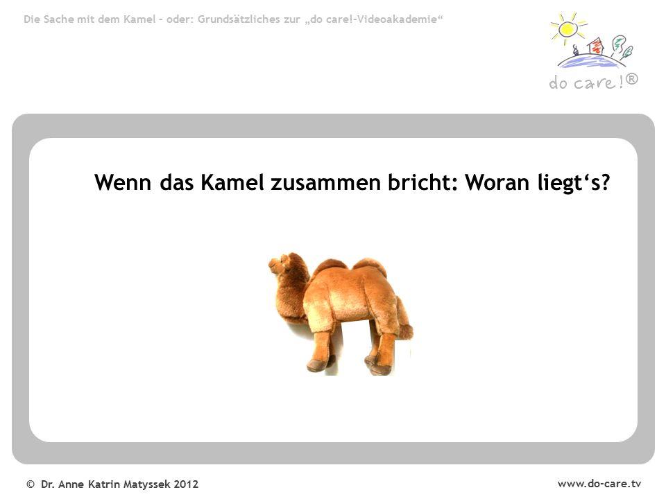 © Dr.Anne Katrin Matyssek 2012 ® Wenn das Kamel zusammen bricht: Woran liegt's.